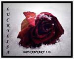 DEVID by luckylisa