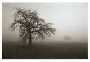silence II by garrit