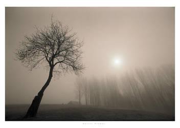 silence III by garrit