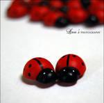 ladybird by incadessence