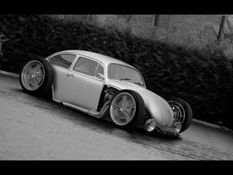 Volkswagen Classic Beetle by degraafm