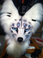 Fursuit markings by wingedwolf94