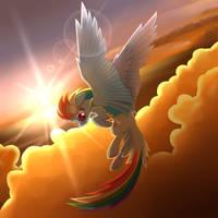 Rainbow Dash by wingedwolf94