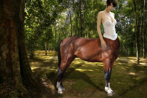 Centaur girl by FluffyXai