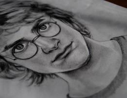 Harry Potter - WIP by anitafigler