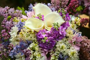 Bouquet Stock by Moonchilde-Stock