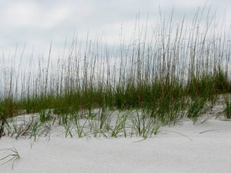 Beaches 4 by Moonchilde-Stock