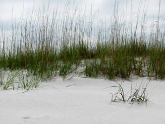 Beaches 7 by Moonchilde-Stock