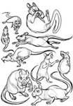 Rat Character Sketches by x-EBee-x
