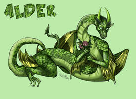 Alder by ThisLittleBluebird