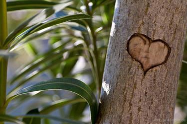 Treeheart by naturtrunken