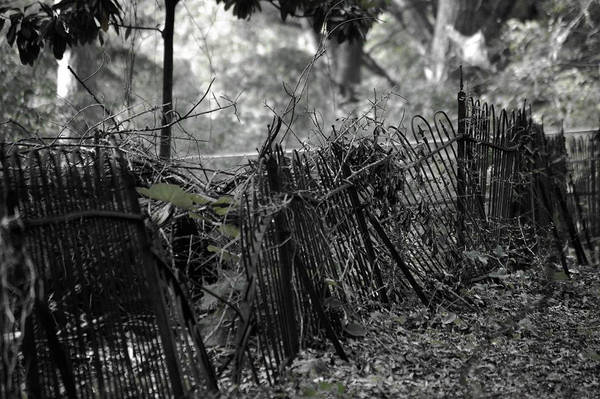 Cemetery Fence by ccreasley