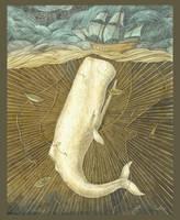 White Whale by CoalRye