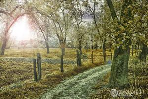 Urdenbacher Kaempe by xnih1lo