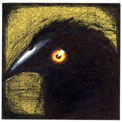 Crow by InkRash