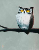 Unamused Owl by MrTomLong