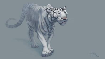 White tiger by MrTomLong