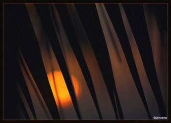 Sunset Caribbean by Jenvanw