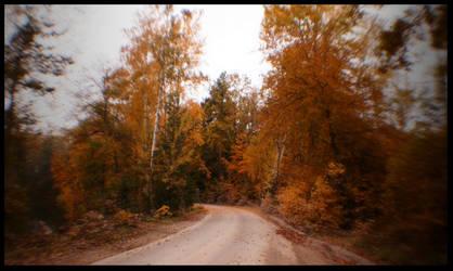 autumn by cpphoto