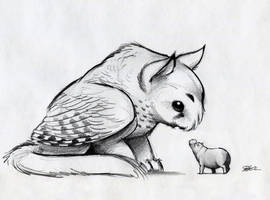 Owl Griffin and North American House Hippo by RobtheDoodler