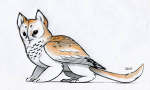 Owl Griffin color design by RobtheDoodler