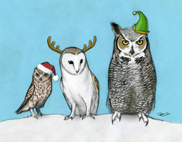 Holiday Owls by RobtheDoodler