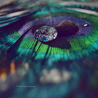 An_endless_ocean by indrekvaldek