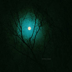 Eerie full moon by indrekvaldek