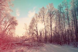 Strange days by indrekvaldek