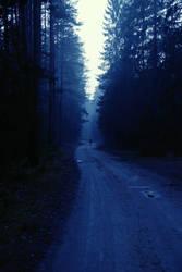 Midnight runner by indrekvaldek