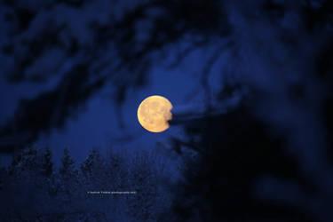 Cold Winter Moon IV by indrekvaldek