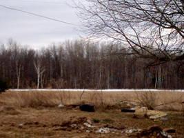 Parts of Field by kandi