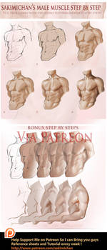 Male muscle step by step tutorial by sakimichan