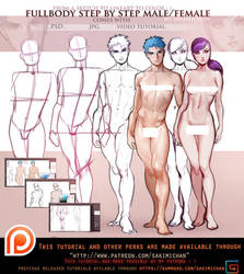 Female. Male Front fullbody tutorial pack .promo. by sakimichan