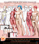 Female. Male 3/4 fullbody tutorial pack .promo. by sakimichan