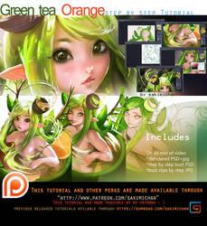Green Tea Orange Tutorial pack. promo. by sakimichan
