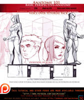 perspective guide + characters voice over lesson . by sakimichan