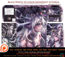 B/w to color speedpaint voice over lesson .promo. by sakimichan