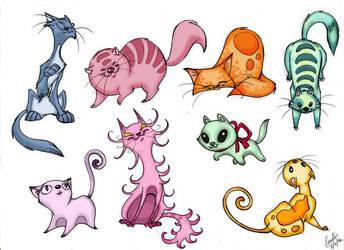 Cats by Sandora