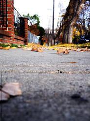 Autumn by MindlessAngel