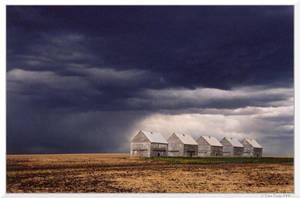 Stormy Farmland by TaraTrigg