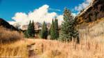 Maroon Bells Colorado Morning - Idyllic by JeffreyDobbs