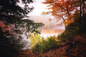 Tahquamenon Falls Michigan - Foggy Fall Morning by JeffreyDobbs