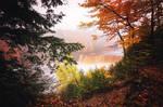 Tahquamenon Falls Michigan - Foggy Fall Morning by JeffreyDobbs
