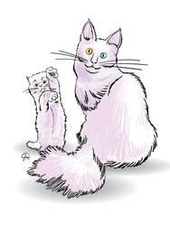 Angora Cats by aliduzgun