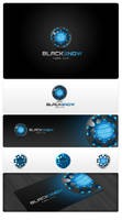 BlackSnowLabs_logo by cici0