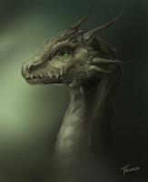 Dragon2 by Trioza