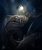 Sea dragon by Trioza