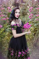 Dark Rose by DarkVenusPersephonae