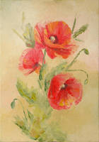 Poppy flowers by alina-loreley